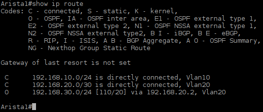Picture6-Arista1_Routing_Table