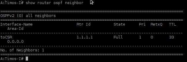 Picture9-OSPF_Neigborship_vSIM
