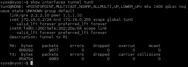picture6_tunnel_interface_tun0_status