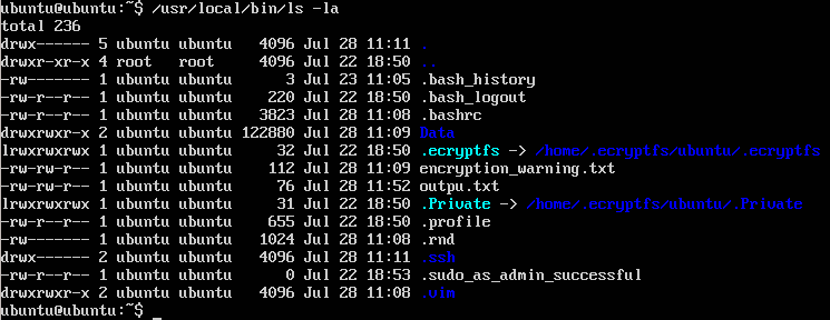 Picture1-ls_Command_Existing_File